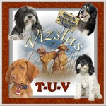 DOG BREED T-V