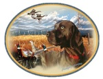 Chocolate Lab Hunts
