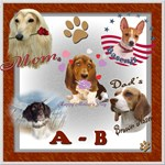 DOG BREED A-B