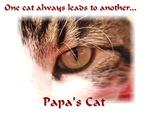 Famous Cats - Papa's Cat