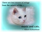 Famous Cats - Schweitzer's Cat