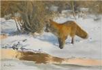 Winter Scene with Fox