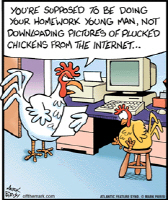Download Plucked Chickens