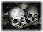 Skulls I