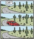 Cacti secret