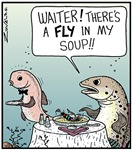 A Fly in my Soup!