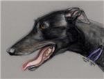 Black Greyhound Head profile
