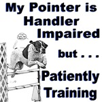 Pointer Agility