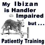 Ibizan Hound Agility