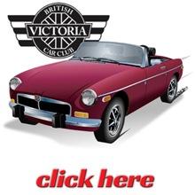 VBCC Burgundy British Sweetheart