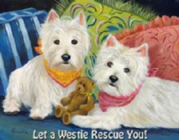 Let A Westie Rescue You!