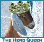 Goats Herd Queen