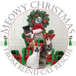 BCR Merry Christmas
