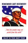 Enlist in the US Navy