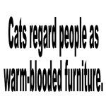 Cat Owner's Furniture Humor