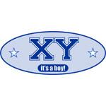 XY - It's A Boy