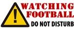 WATCHING FOOTBALL HATS