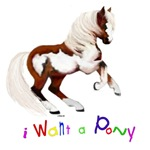 Pony Designs For Kids