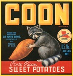 Coon Fruit Crate Label