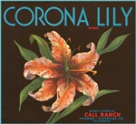 Corona Lily Fruit Crate Label