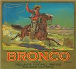 Bronco Fruit Crate Label