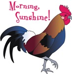 Morning Sunshine!