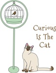 Curious Is The Cat