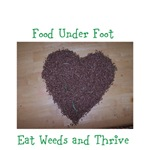 Eat Weeds and Thrive Seed Heart