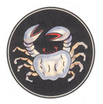 Waving Crab and Sea Creatures