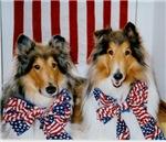 Patriotic Collies