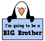 Going to be a Big Brother