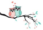 Cute owls in love