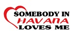 Somebody in Havana loves me shirts. Charming creat
