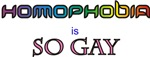 Homophobia is So Gay Products