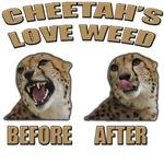 Harold & Kumar - Cheetah's Love Weed