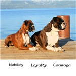 Boxer - Nobility Loyalty Courage