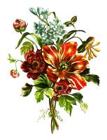 Tulips and Honeysuckle Bouquet by Tessier