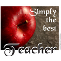 BEST TEACHER TEES AND GIFTS