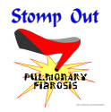 PULMONARY FIBROSIS AWARENESS T-SHIRTS & GIFTS