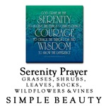 Serenity Prayer Simple Beauty Section