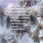 Serenity Prayer Snow Branch