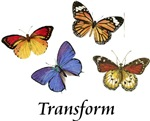 Transform Butterflies ~