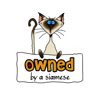 owned by a siamese