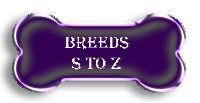Breeds S to Z