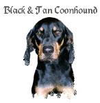 Black & Tan Coonhound