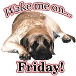Mastiff Friday