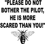 PLEASE DO NOT BOTHER THE PILOT