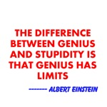 Genius vs Stupidity