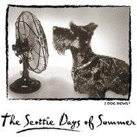 The SCOTTIE DAYS of SUMMER