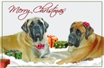 Mastiff Holiday Christmas Cards